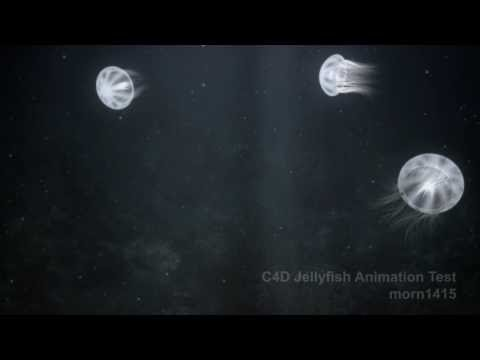 Jellyfish Animation Test HD