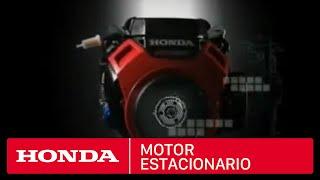 Motor estacionario Honda GX690