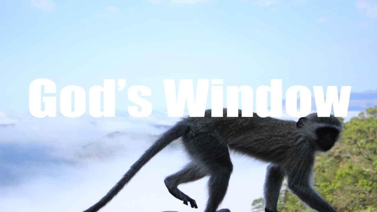 God's Window, Mpumalanga, South Africa | Canon HD | Virtual Trip