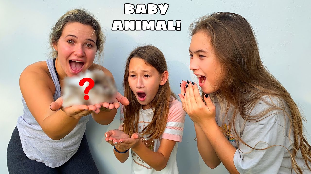 SURPRISING MY COUSINS WITH NEW BABY ANIMAL! WHAT IS IT?!