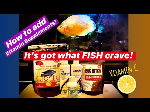 Vitamin Supplements For Your Fish