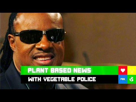 VEGAN STEVIE WONDER WON'T SHUTUP