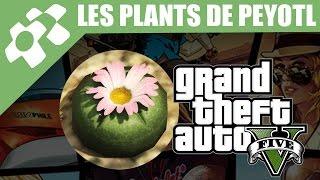 GTA V : Les 27 Plants de Peyotl et Leurs Transformations