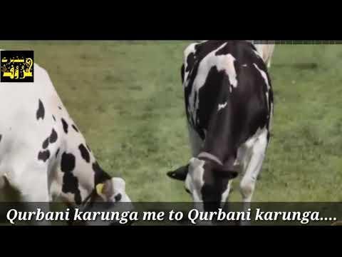 Qurbani karunga me to kurbani karunga nazam with lyrics for watsapp status