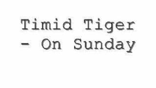 Watch Timid Tiger On Sunday video