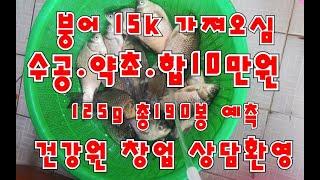 건강원창업 건강원 붕어즙 붕어 익산 지역 고객 15k …