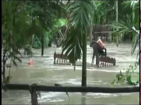 assam flood and assam govt