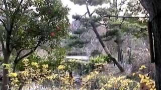 Seeking Serenity 2: Mukojima Hyakkaen Gardens