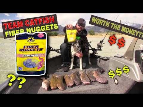 Fiber Nuggets Catfish Bait Is It Worth The Money??