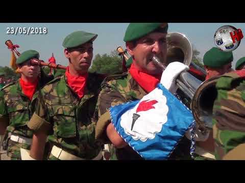 a2b2ad04ef6 VILA NOVA DA BARQUINHA – Regimento de Paraquedistas de Tancos de parabéns!  Unidade celebrou 62 anos - YouTube