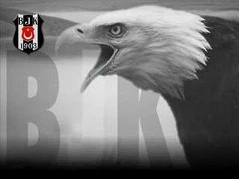 Beşiktaş - Ekinler Dize Kadar