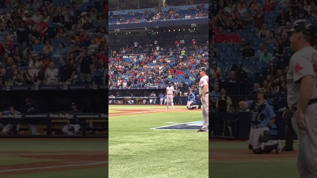 Big Papi's Last At Bat At Tropicana Field.  Dustin Pedroia Scores Like A Spider Monkey! 09/25/2016