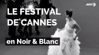 Alain Delon, Marion Cotillard, Elle Fanning... le Festival de Cannes en noir & blanc | AFP Photo