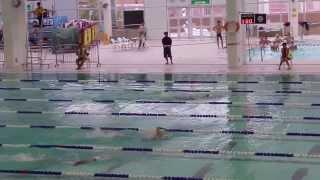 張振興 2013-2014 D2 學界 校際游泳比賽 男子甲組200米自由泳決賽【張振興伉儷書院】『第3線 周焯凌(第1名)』「第7線 黃文蹈(第3名)