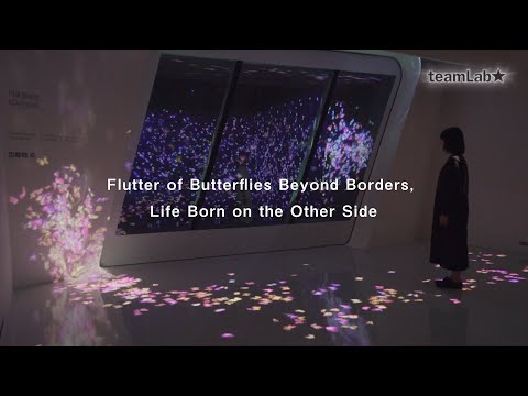 Flutter of Butterflies Beyond Borders, Life Born on the Other Side