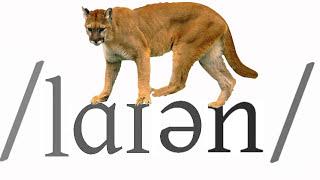 British English Vocabulary about Animals - Learn English