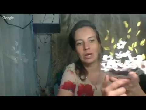 Магнолия - Растения и цветы