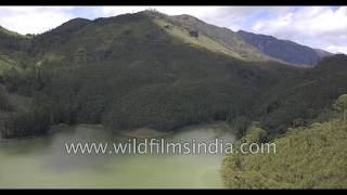 Kerala tea gardens, shola forests, townships of Munnar: aerial journey