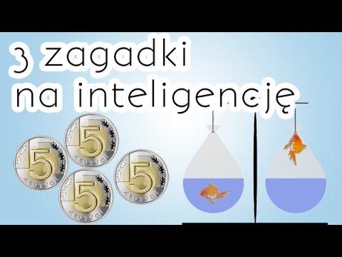 3 zagadki logiczne na inteligencję