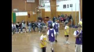 Mountainside, NJ Rec Commission Boys Basketball Finals 2008