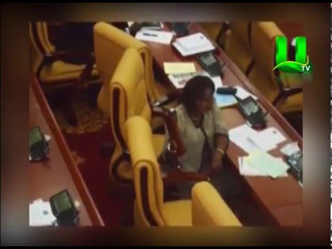 Parliament: China Chairs Replaced