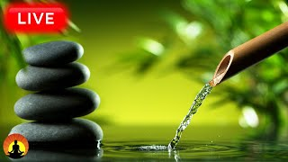 Download 🔴Relaxing Music 24/7, Healing Music, Meditation Music, Spa Music, Sleep, Zen, Study Music, Yoga