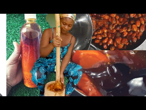 Download Palm oil   make palm oil from scratch with a tip from sweet Adjeley