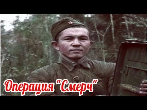 Операция Смерч 1942г