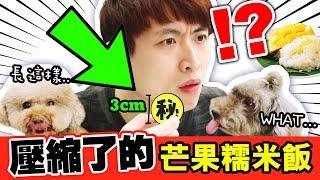 【🇹🇭熱賣】「壓縮了的」芒果糯米飯!😱只有3cm?真的好吃嗎...🤔榴槤配龍眼?(CC中字)#泰國零食3
