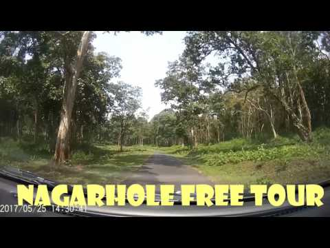How to get Free Forest Safari of Nagarhole National park(Tiger Reserve)