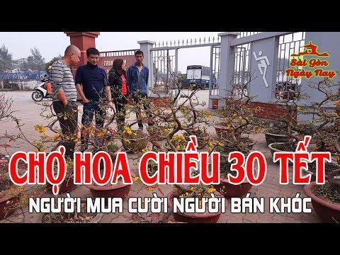 """Đi Chợ Hoa Chiều 30 Tết Ngắm Mai Bình Định """"đọ dáng"""" cùng Đào Nhật Tân kẻ khóc người cười!"""
