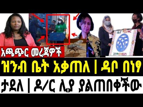 ዳቦ በነፃ በኢትዮጵያ | ዝንቧ ቤት አቃጠለች የማይታመን | ዶ/ር ሊያ ያልጠበቀችው ተደረገላት | አጫጭር መረጃዎች | MnAddis News | Ethiopian