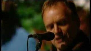 Sting - THE HOUNDS OF WINTER