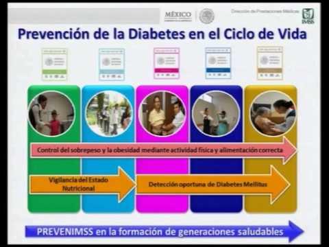 Modelo de prevención en diabetes mellitus (PREVENIMSS