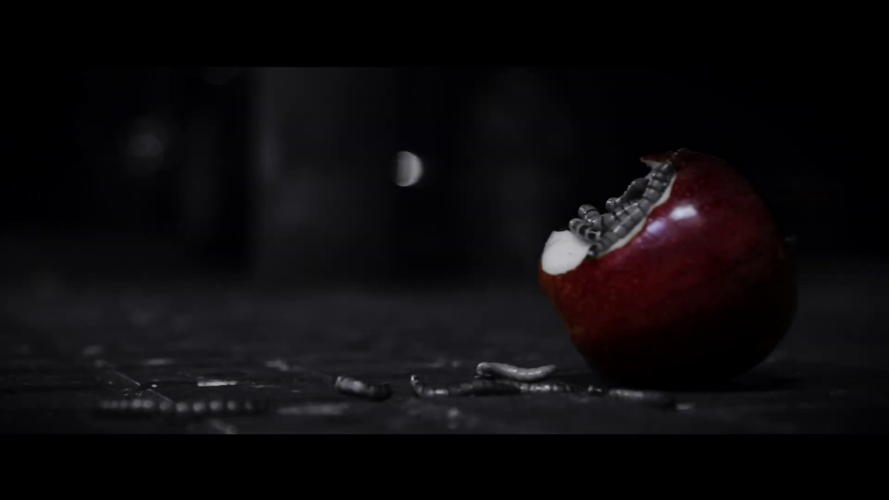 """Trailer de  """"Paja, madera y ladrillo"""""""