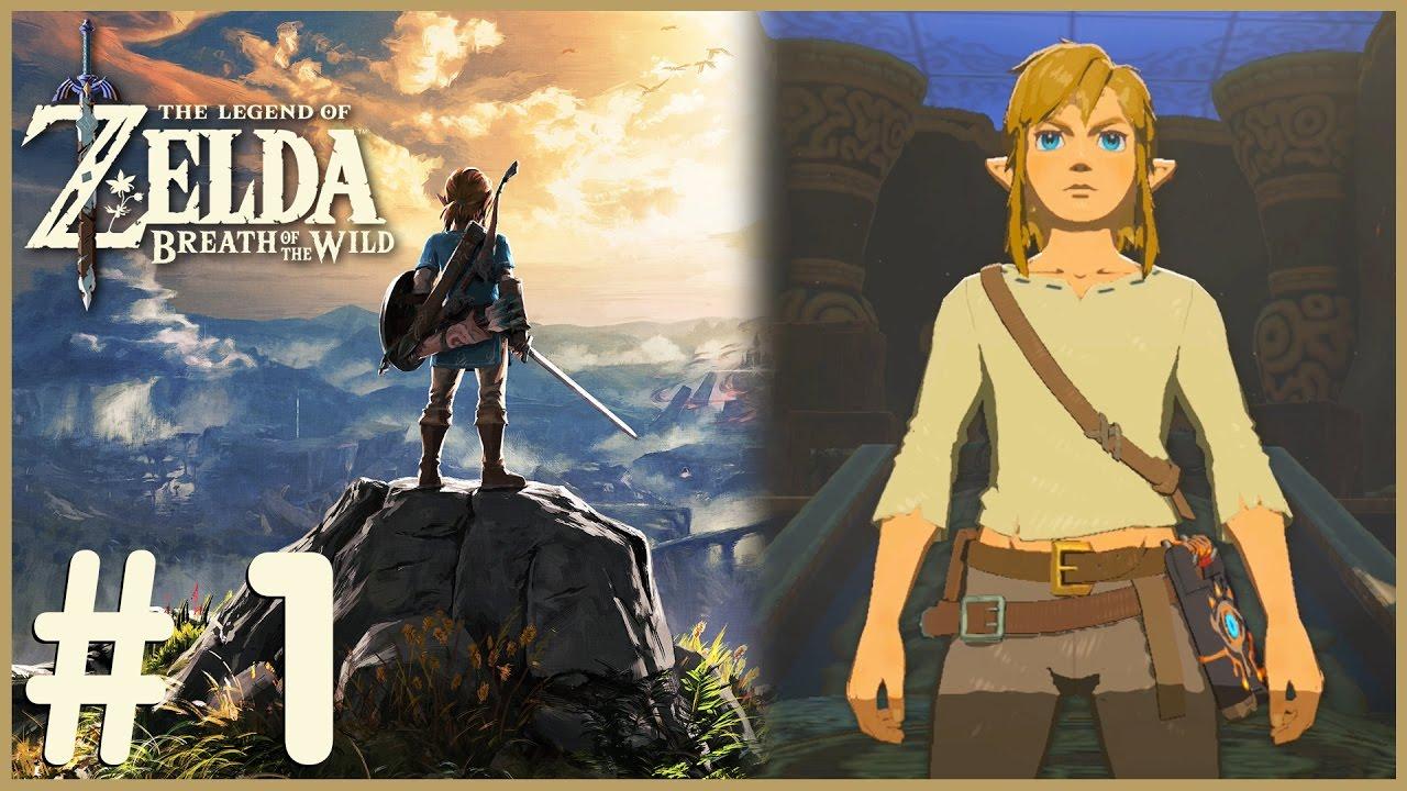 Zelda: Breath Of The Wild - Wake Up Link (1)