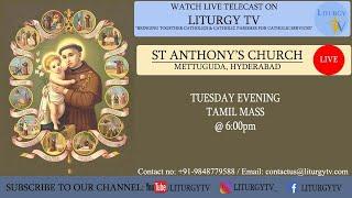 Rev Fr. Sagaya Raja   Tuesday Tamil Mass 6pm   St. Anthony's Shrine   Mettuguda   20-7-21