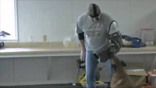 Personal Protection: Training Our Dog To Prote