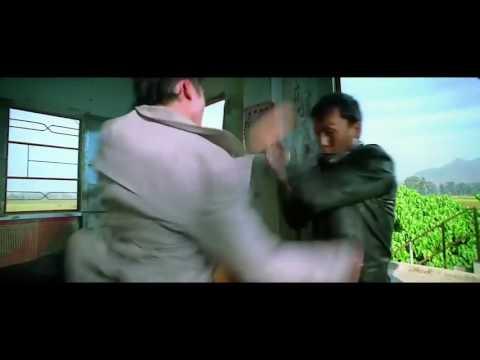 Donnie yen vs Collin chou