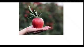 Gambar cover top 10 lines on Apple, an apple a day keeps the doctor away  in education channel by Ritashu.