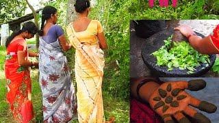 Henna Leaves Traditional Mehndi for Girls - Naturally Mehndi leaves paste for Women