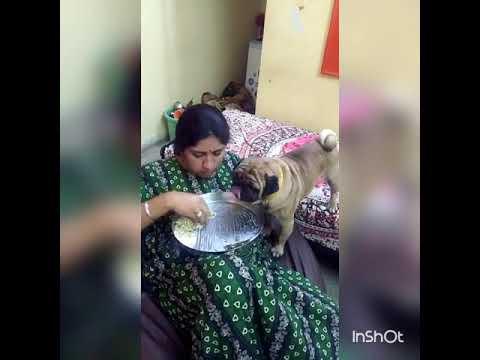 Amma Amma Video Song