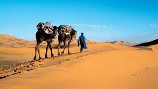 Video Au delà des voyages - Maroc la lumière du sud download MP3, 3GP, MP4, WEBM, AVI, FLV Oktober 2017