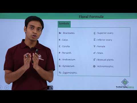 Floral Formula - Introduction