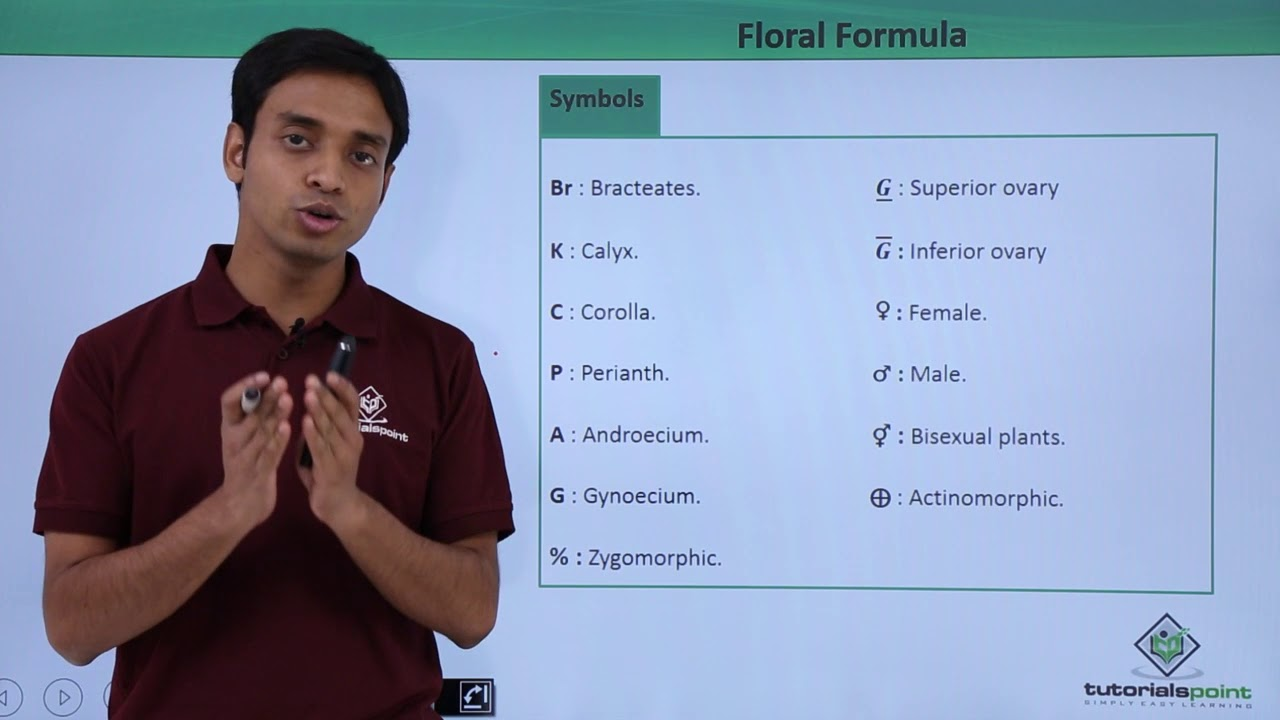 Floral Formula - Introduction