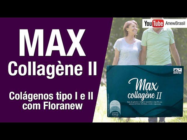 Colágeno tipo I e II - Max Collagene II