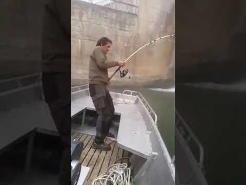 Atrapa a El Pez mas grande del Mundo