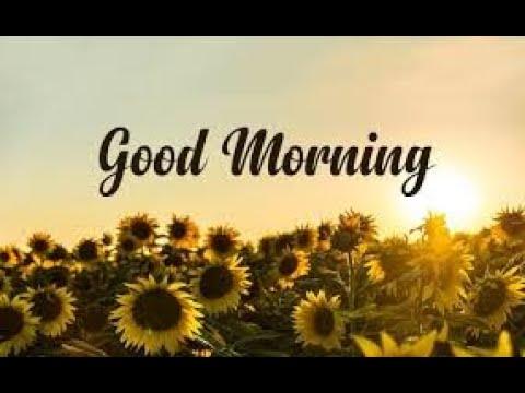 Good Morning - Ringtone