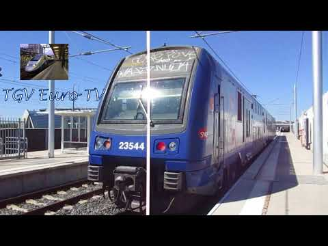 Les trains en gare de Avignon TGV le 4  Septembre 2017