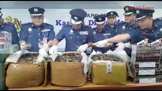 KLIA Customs seizes Hong Kong-bound Pangolin scales worth RM4.4m